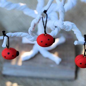 extra-ladybugs-2